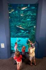 Wilmington Hotel Near NC Aquarium