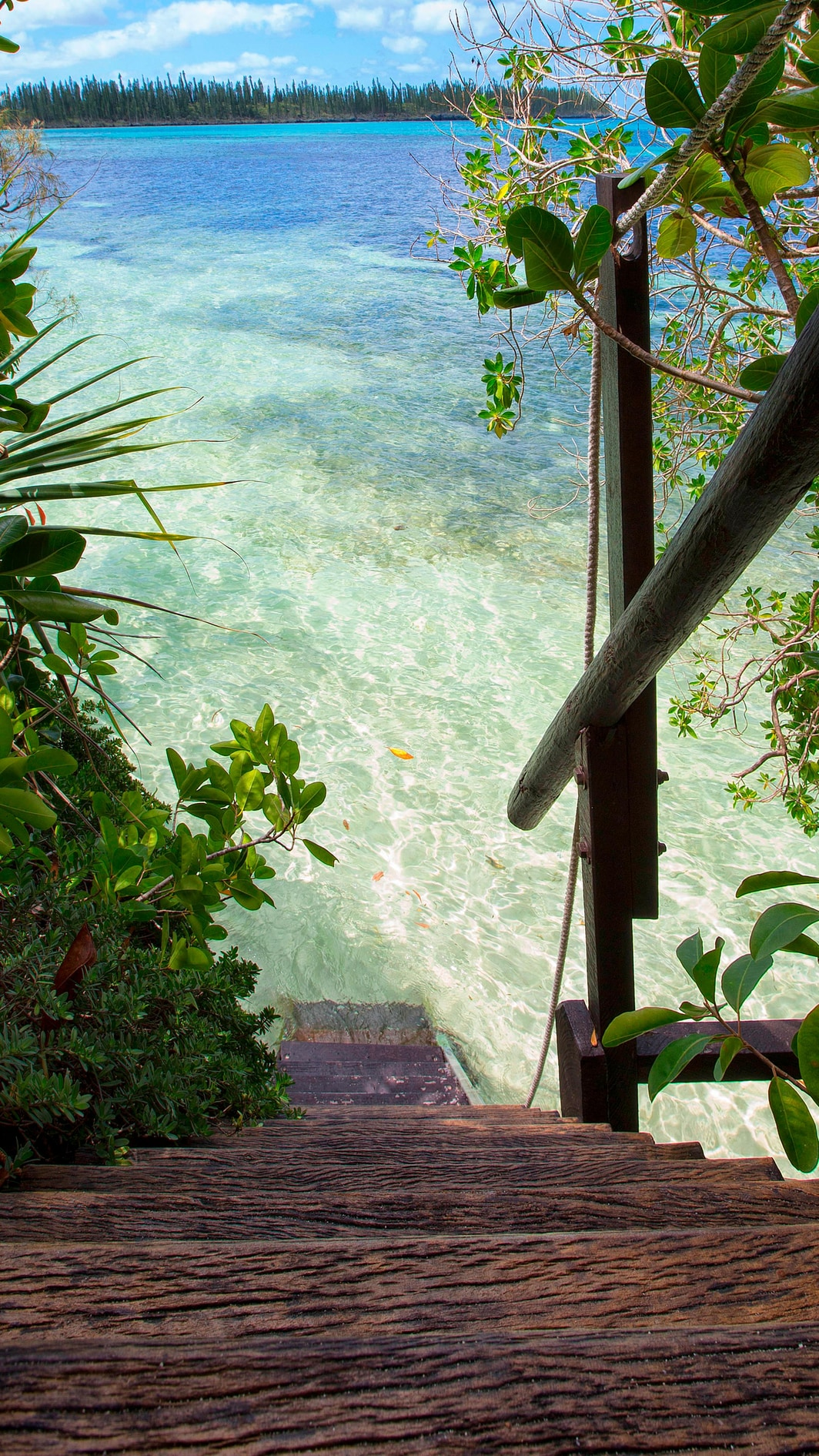 Panoramic Bungalow - Private access to the lagoon