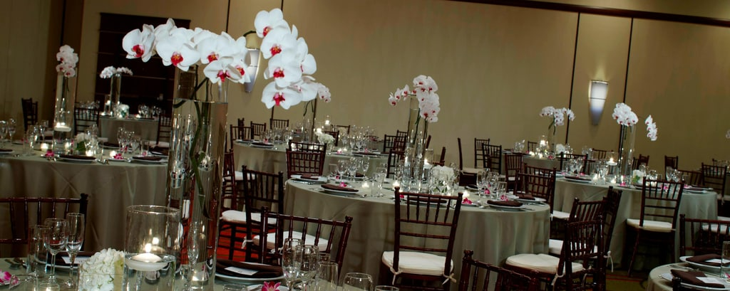 Renaissance Indianapolis North Hotel Weddings
