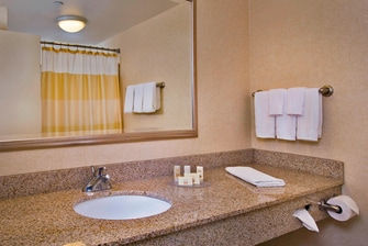 Ronkonkoma suite bathroom