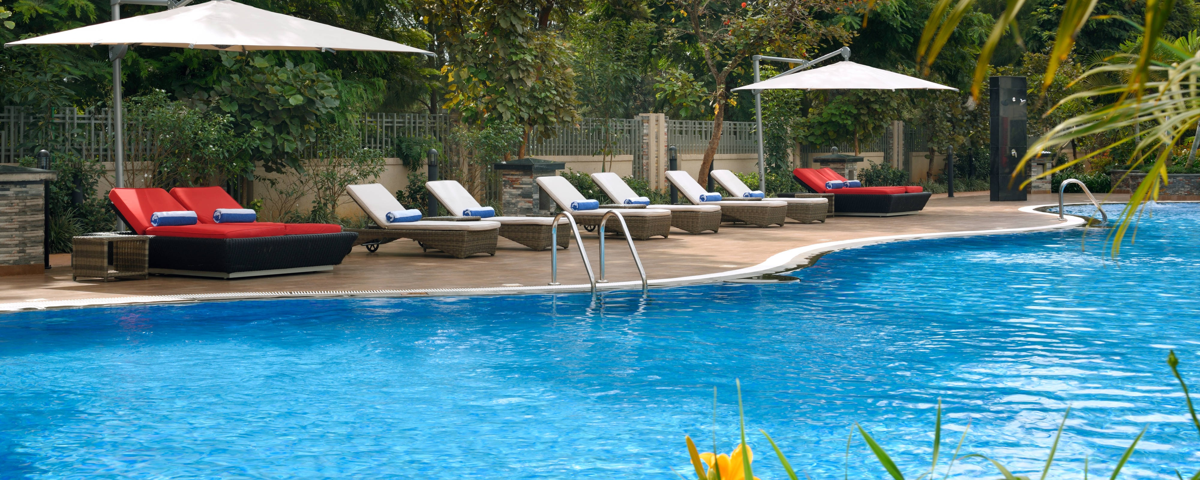86 Chicago Hotels With Outdoor Pools Cheap Hotels With