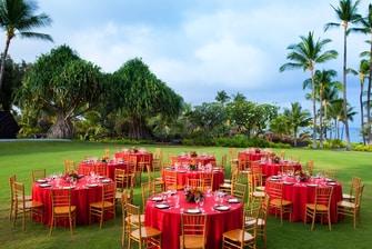 Hawaii Lawn