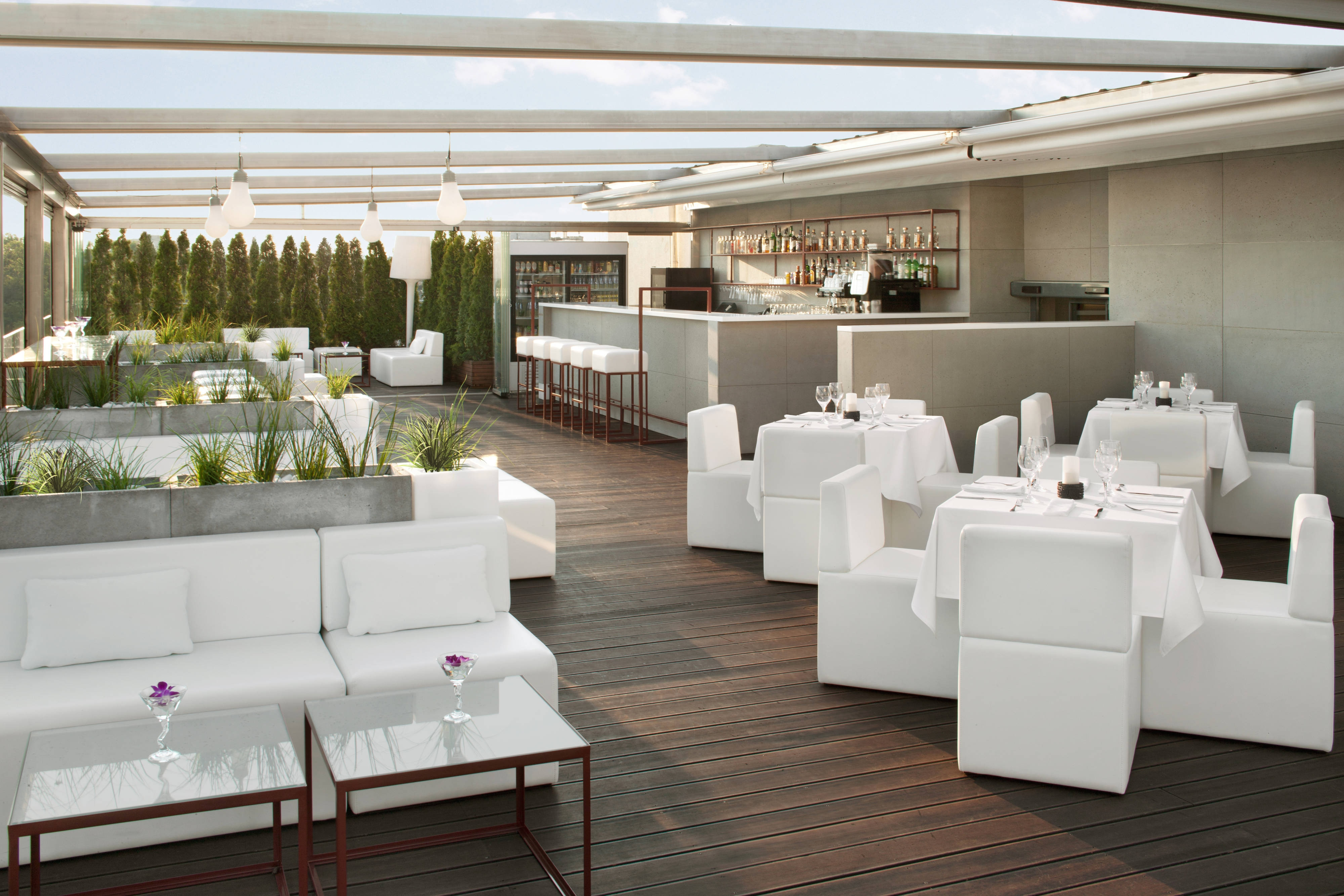 Bar on the Roof Top Terrace