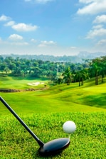Local Area Palm Garden Golf Course