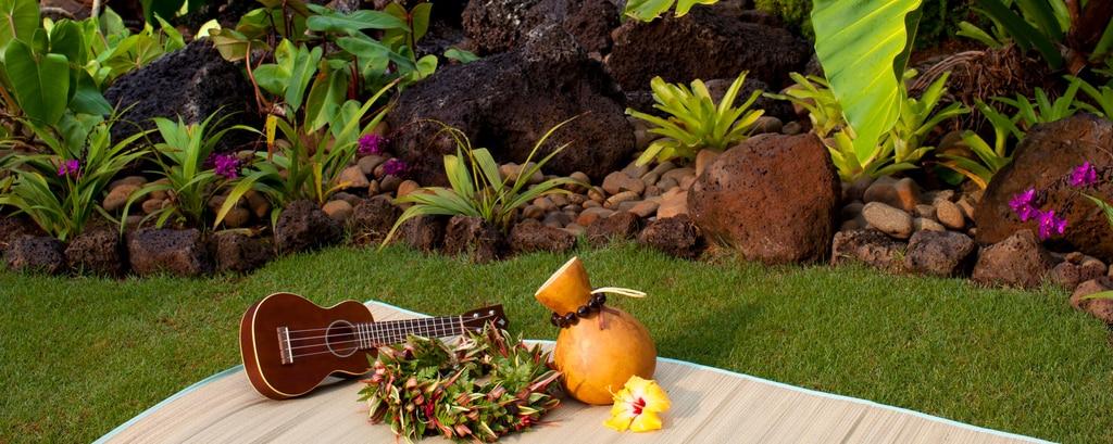 Hawaiian Cultural Activities