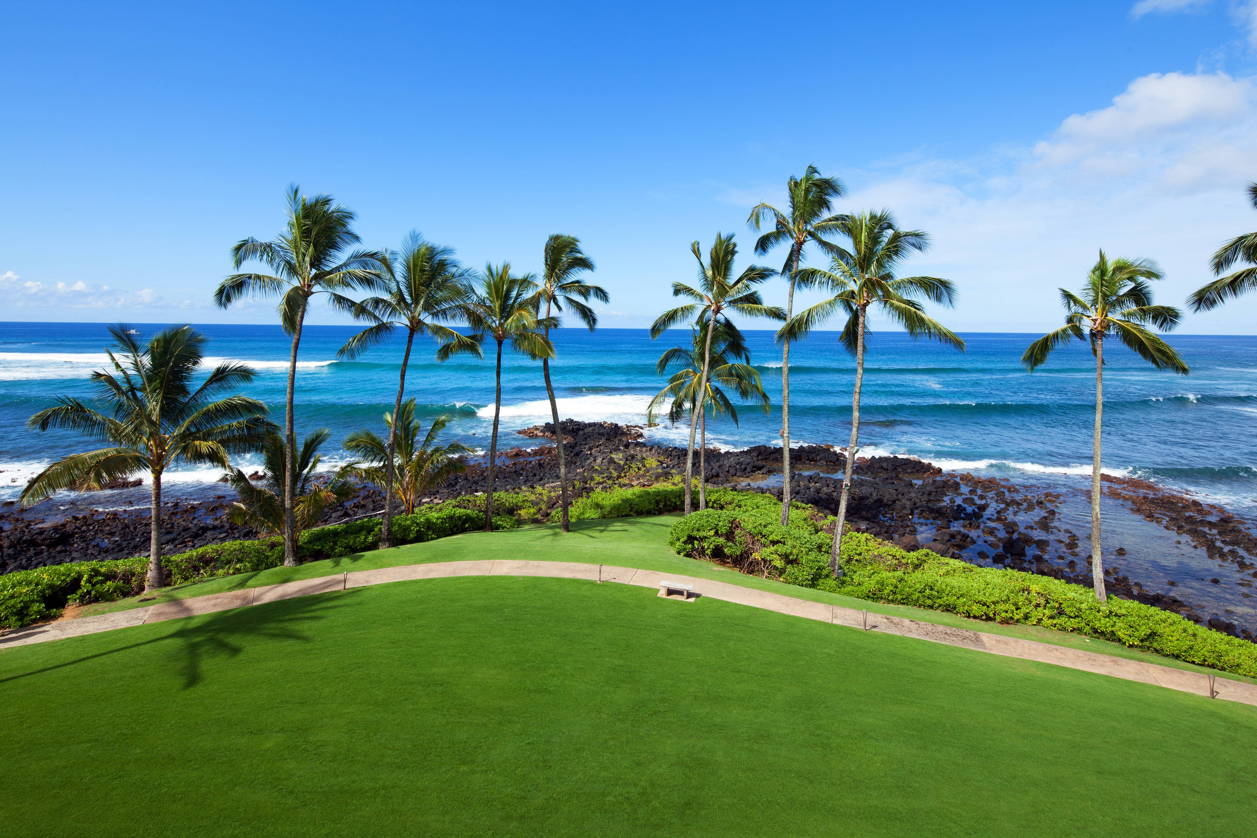 Ocean Lawn