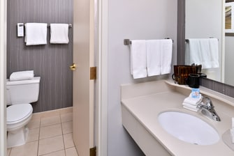 Courtyard by Marriott Laredo Guest Bathroom