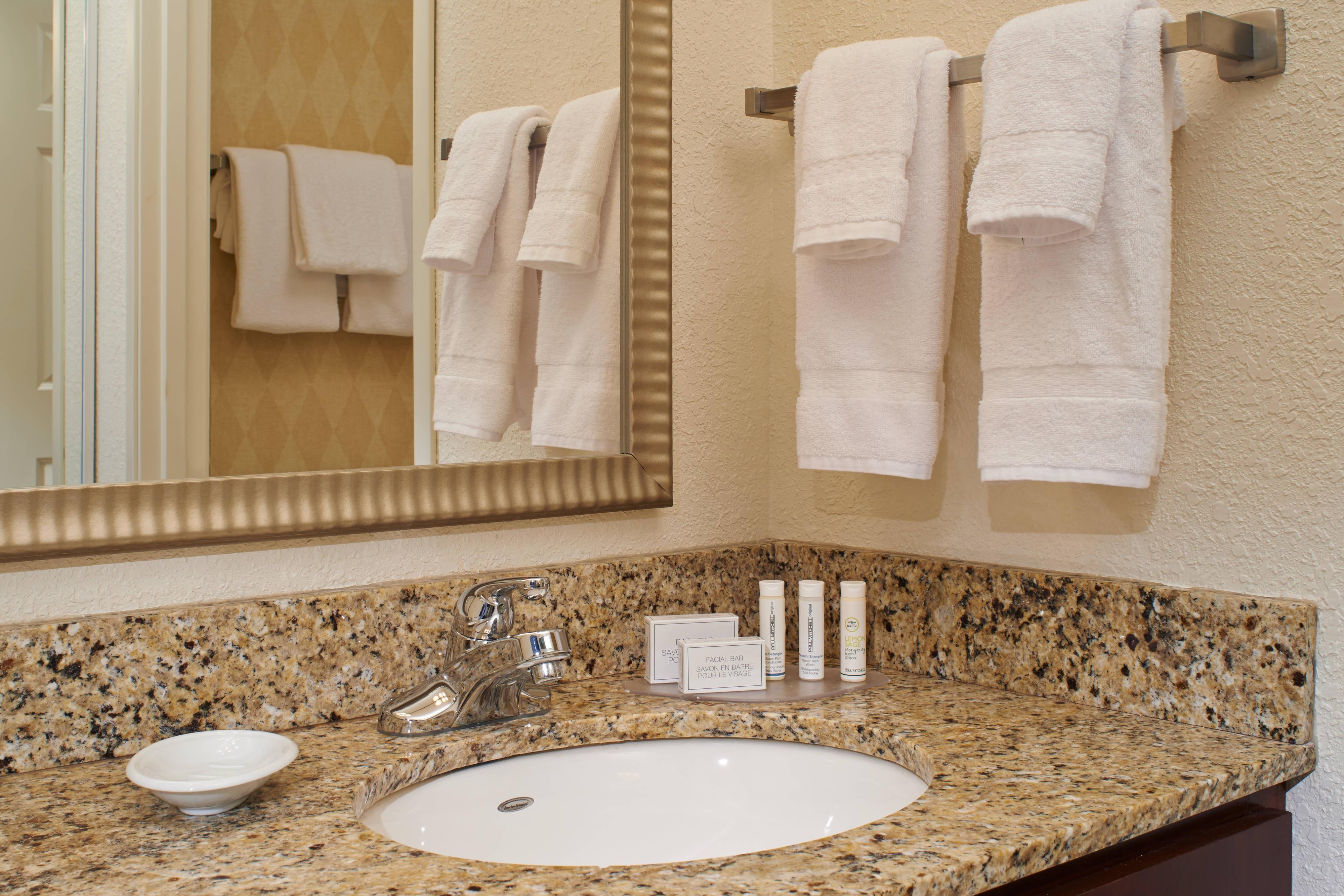 Saginaw Michigan hotel bathroom
