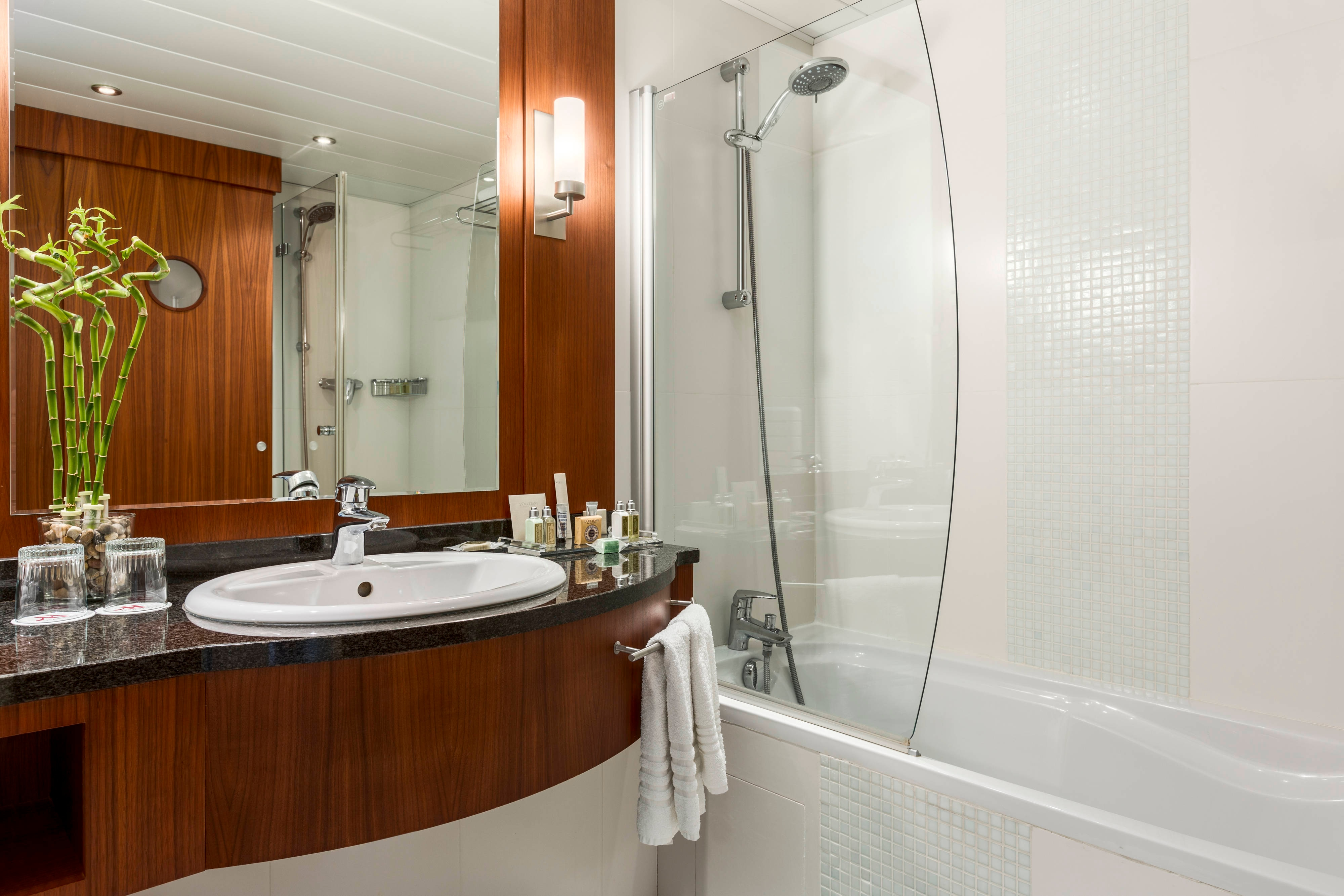 Panoramic Suite Bathroom