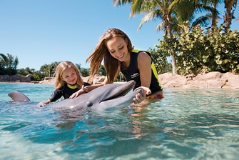 Discovery Cove perto do Orlando World Center