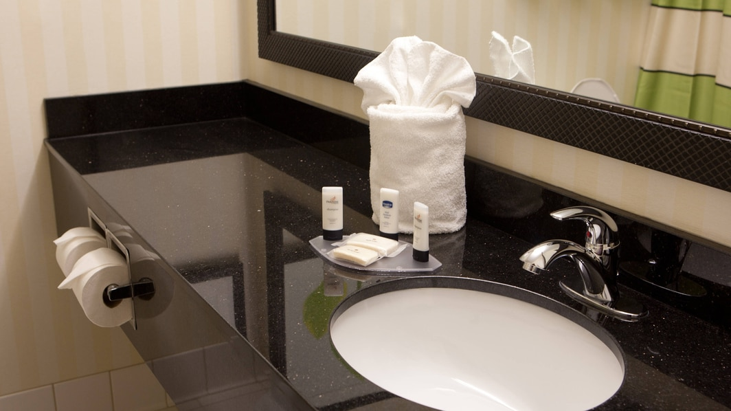 メンフィスのホテルのスイートのバスルーム