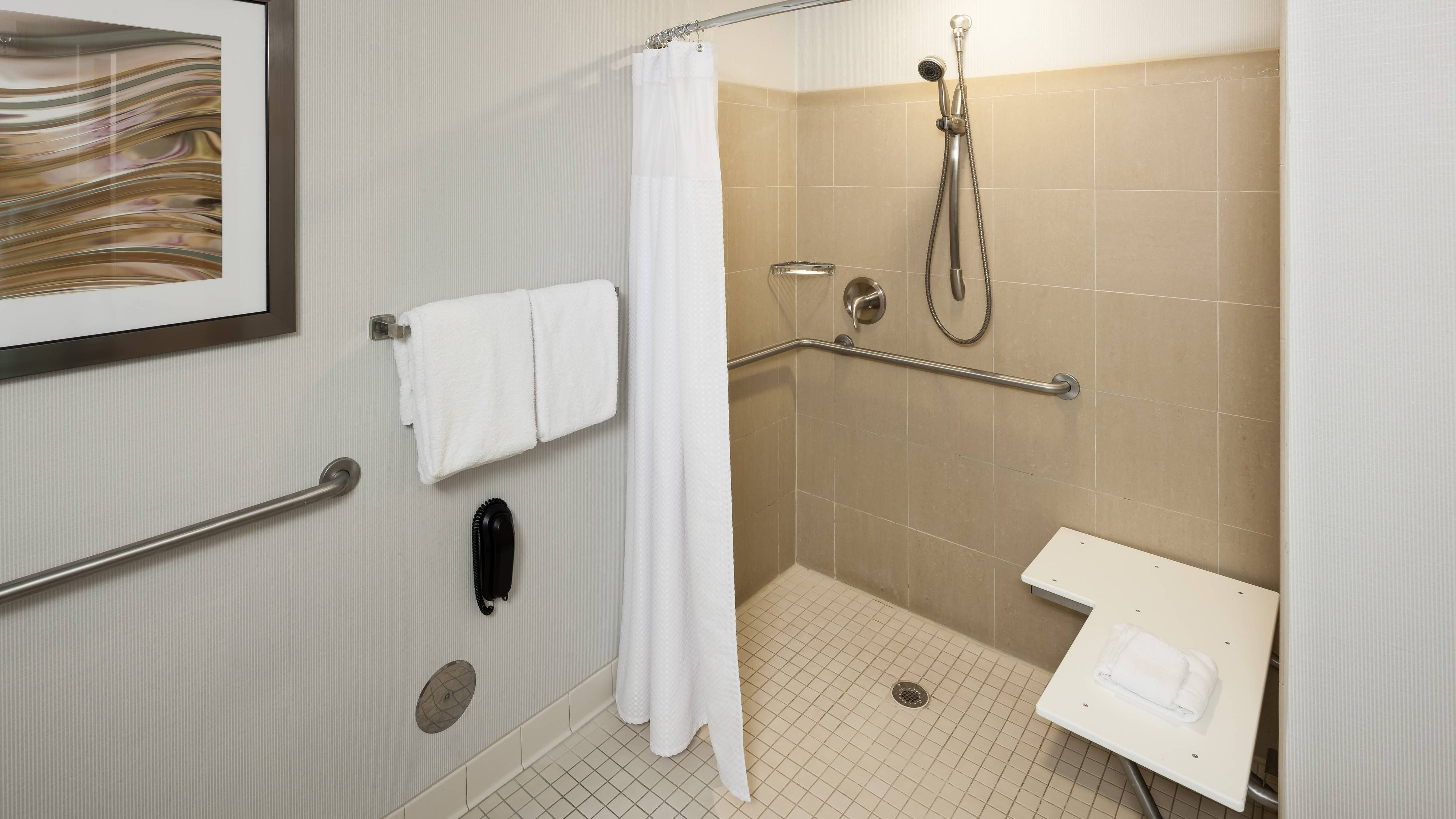 Roll-in Shower Accessible Bathroom
