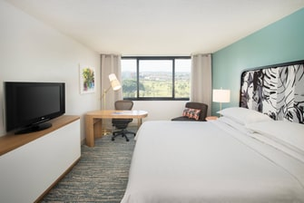 Queen/Queen Deluxe Guest Room - Golf &  Miami Skyline View