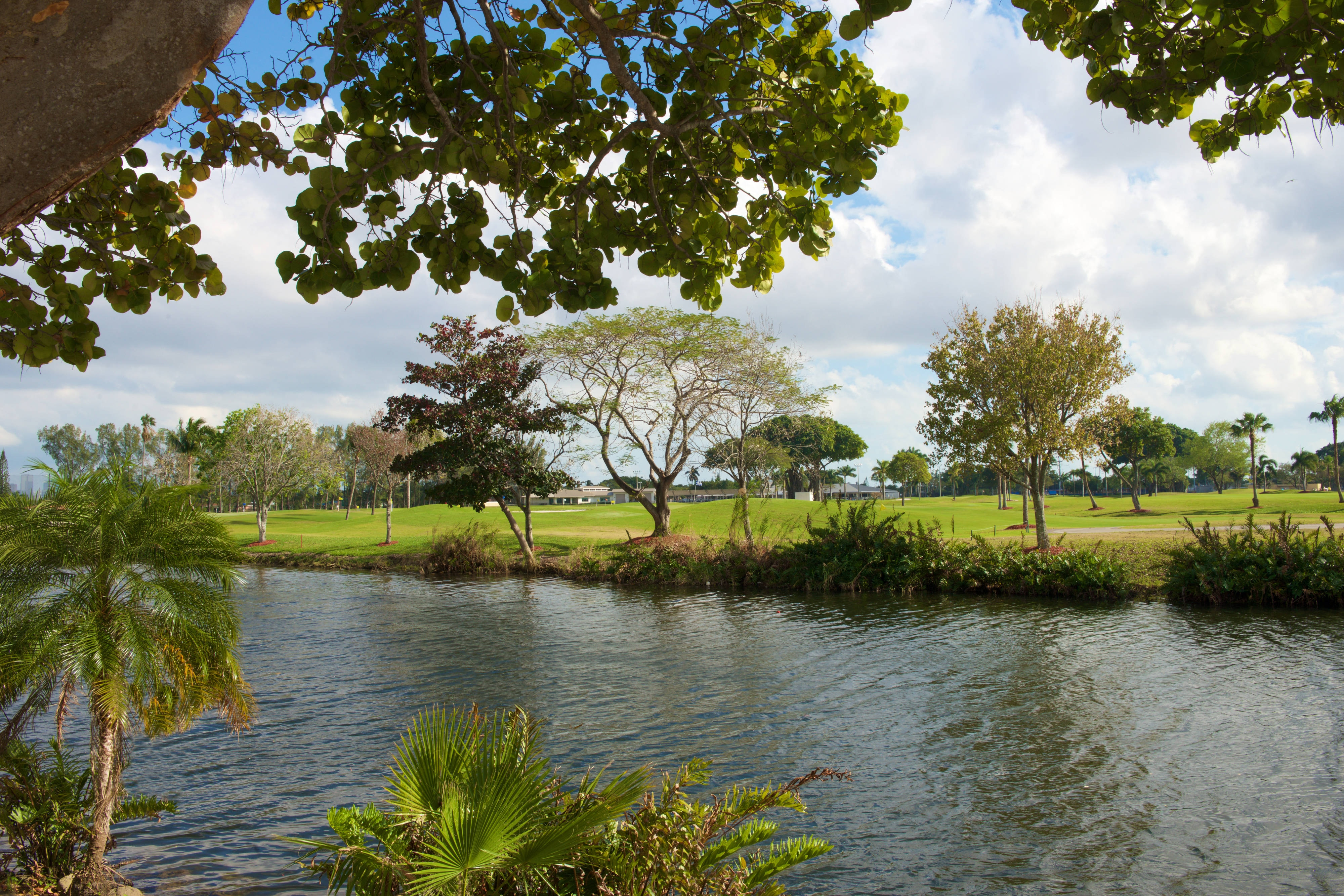 Miami River and Melreese Golf