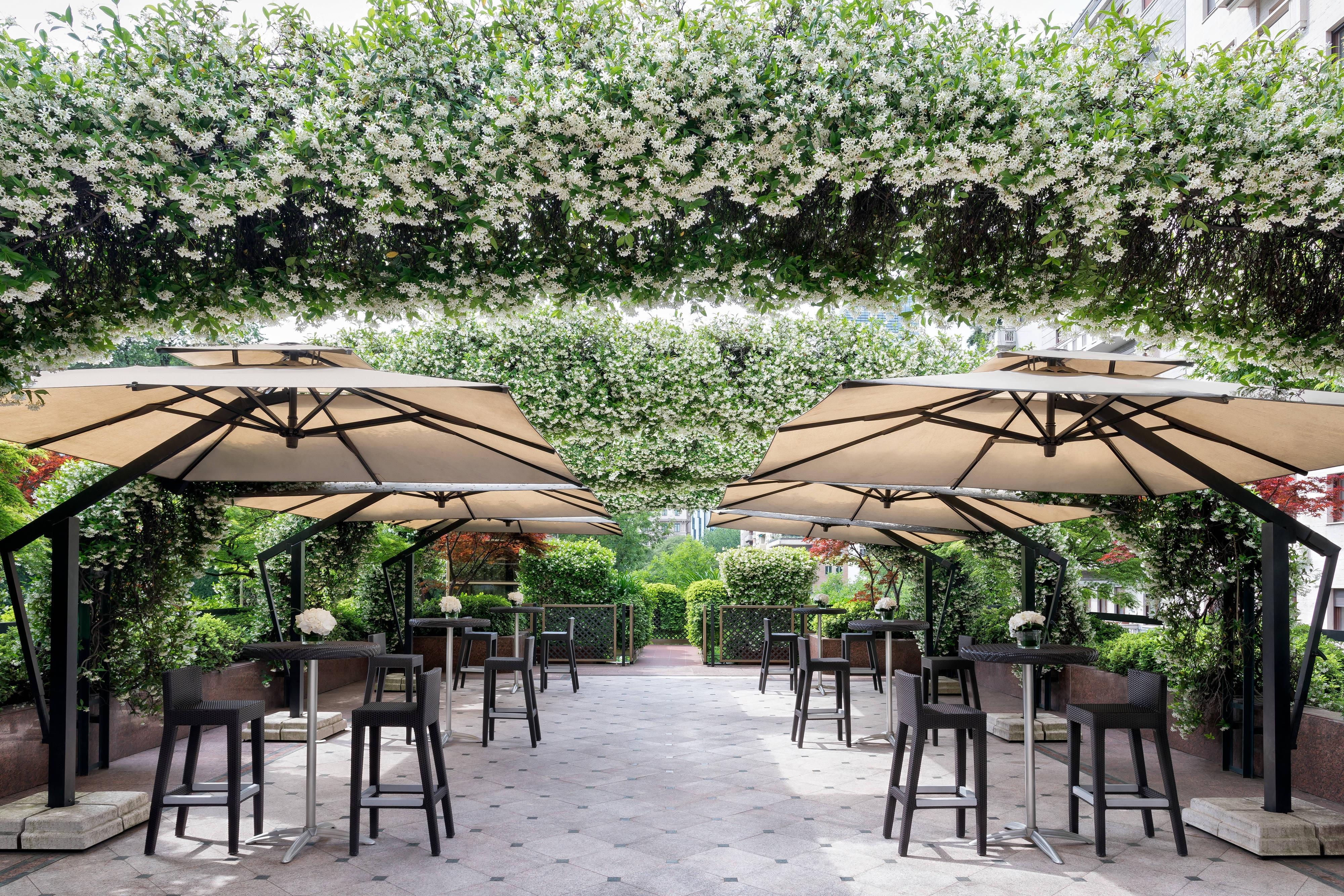 PanEVO Terrace - Cocktail