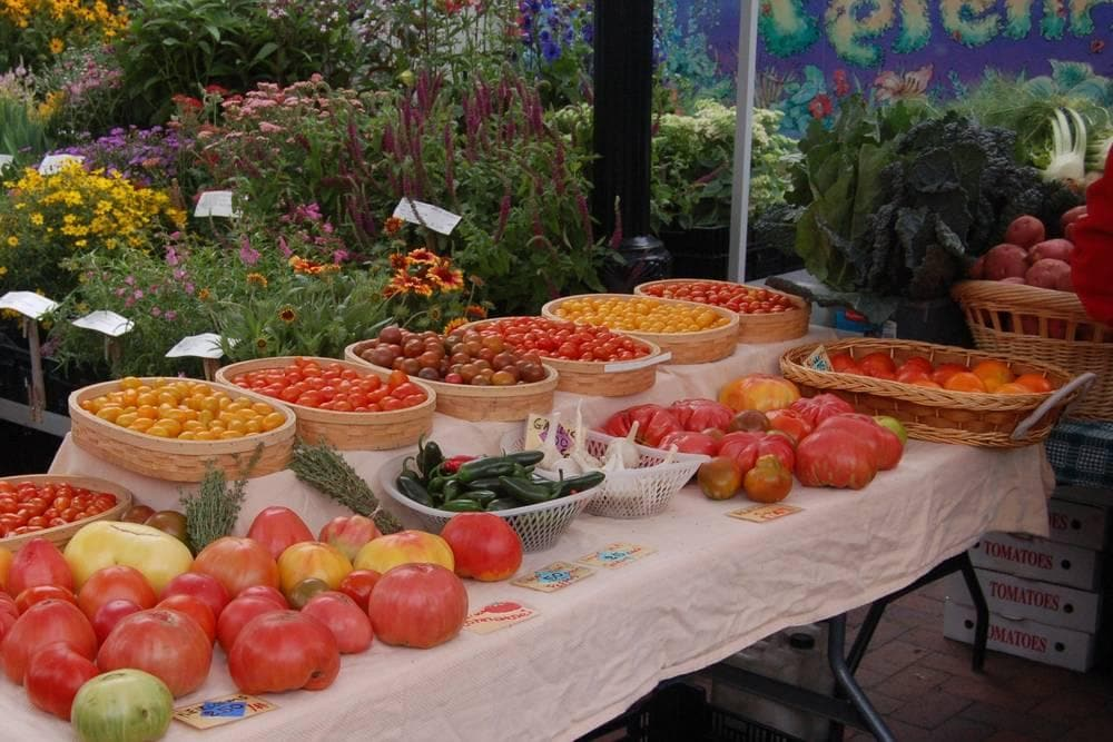 Dane County Farmers Market