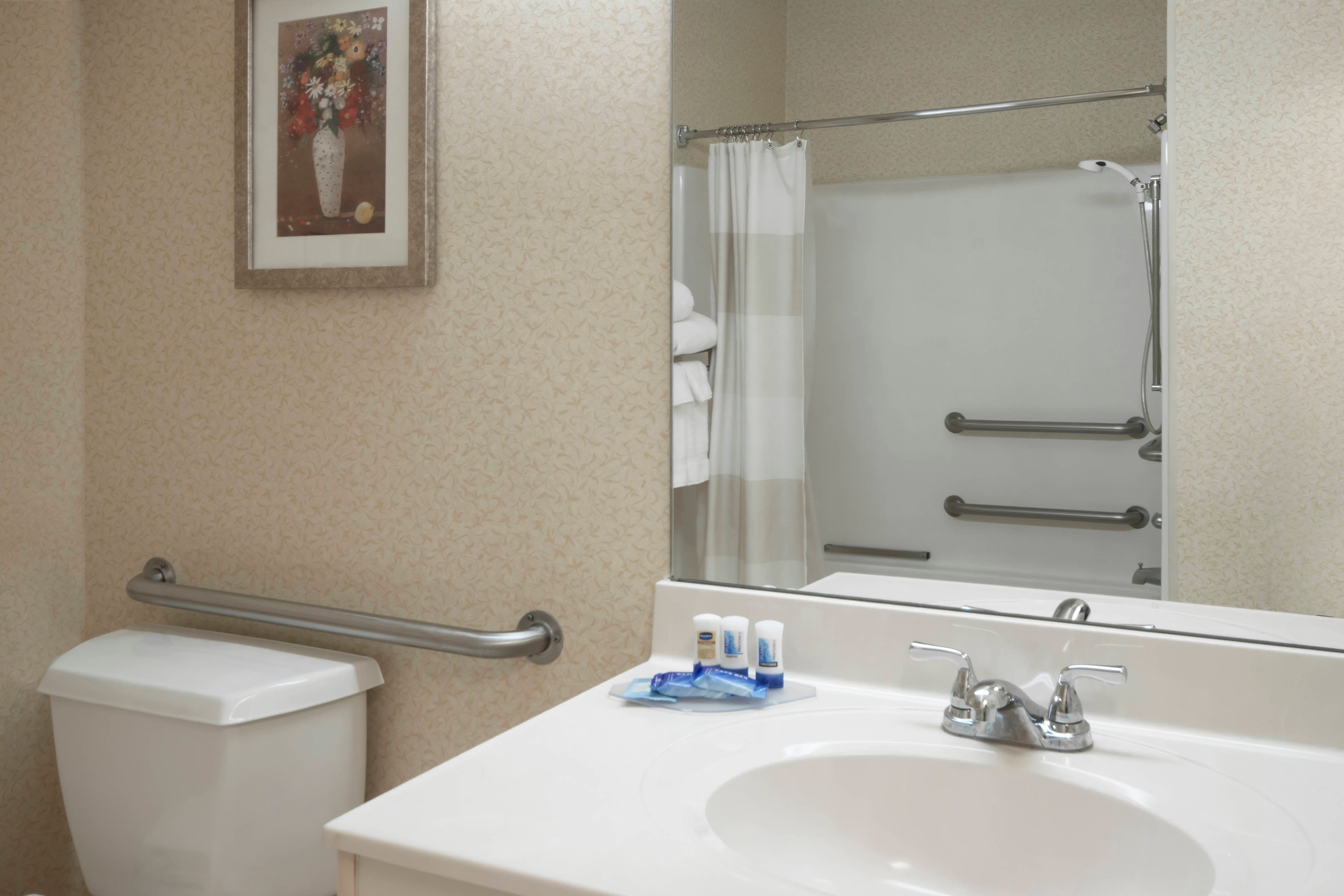 Coon Rapids Hotel Accessible Bathroom