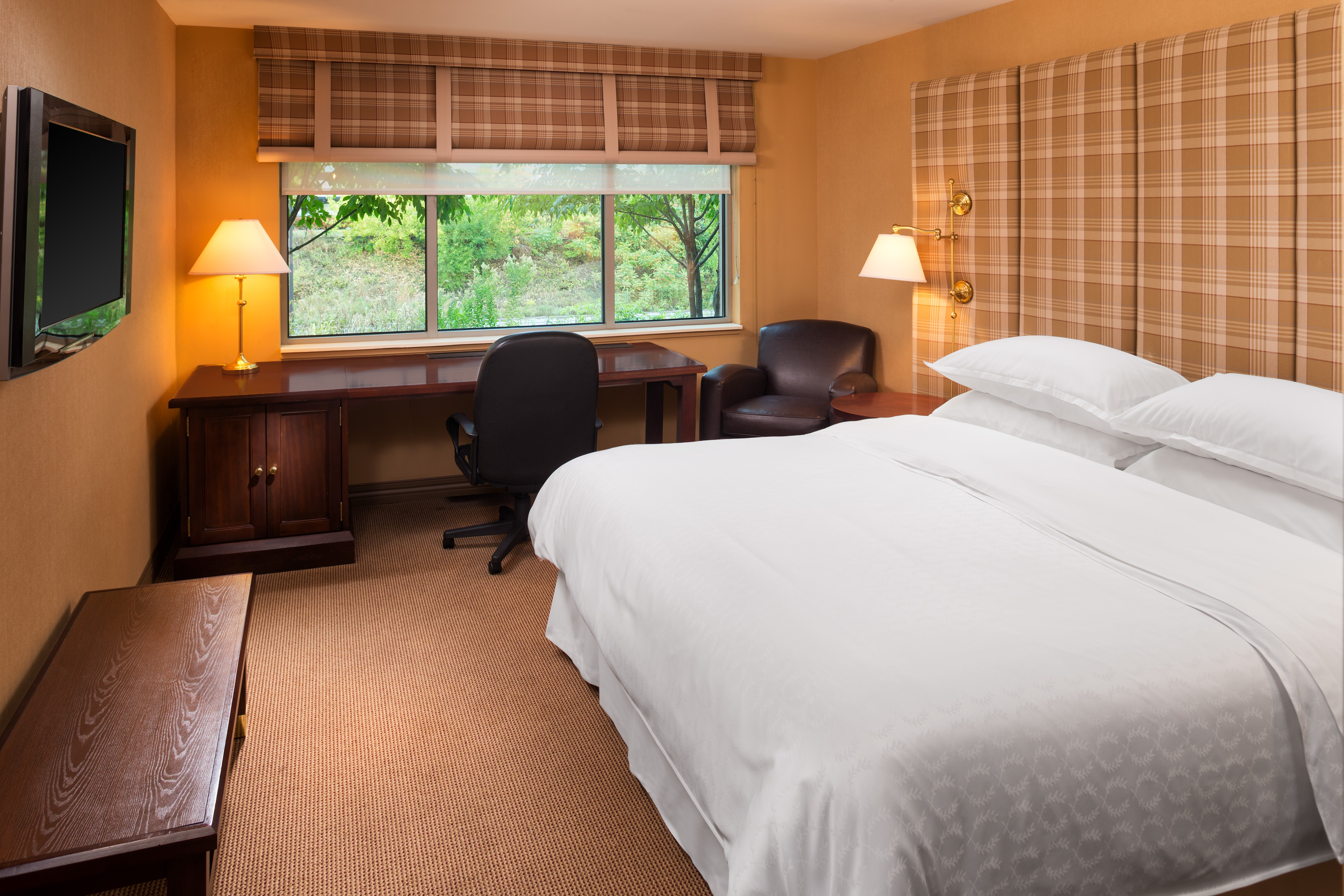 King Traditional Guest Room