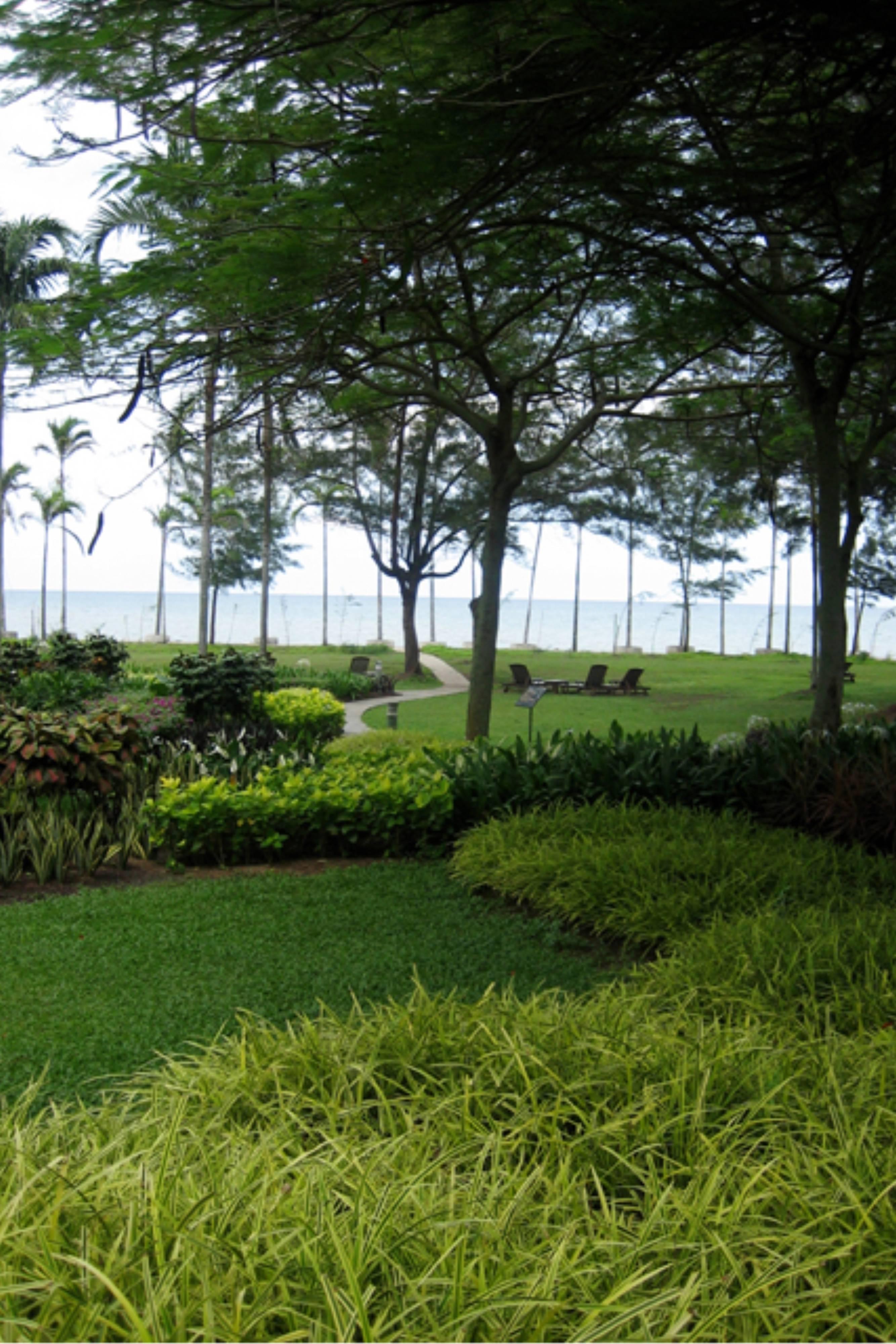 Miri Marriott Lush Gardens
