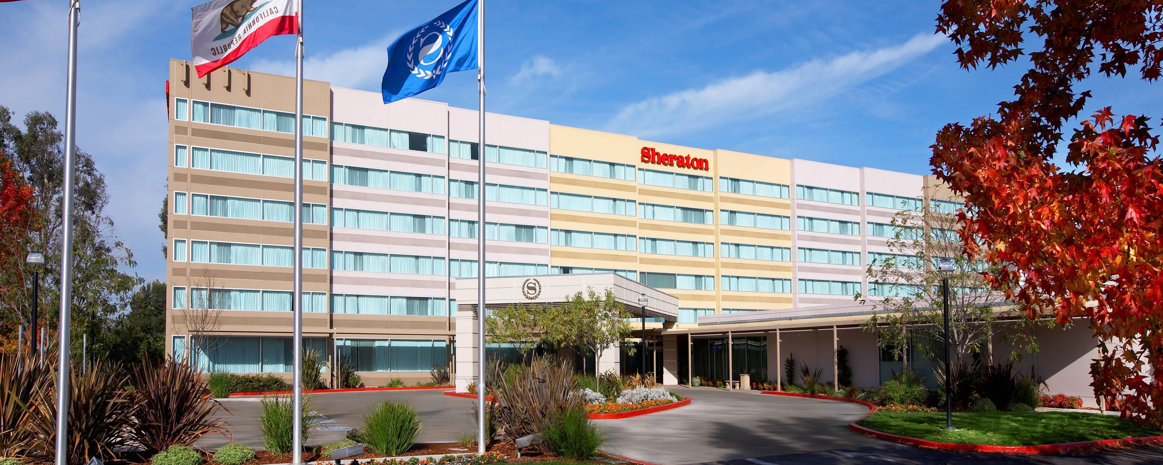 Pet-Friendly Hotel in Livermore, CA | Sheraton Pleasanton Hotel