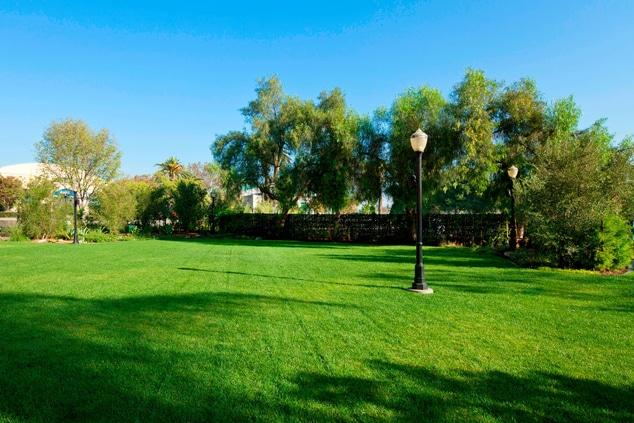 Function Lawn Garden