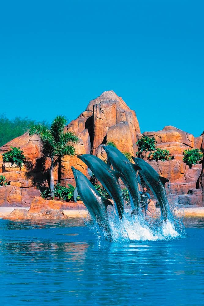 Sea World on the Gold Coast