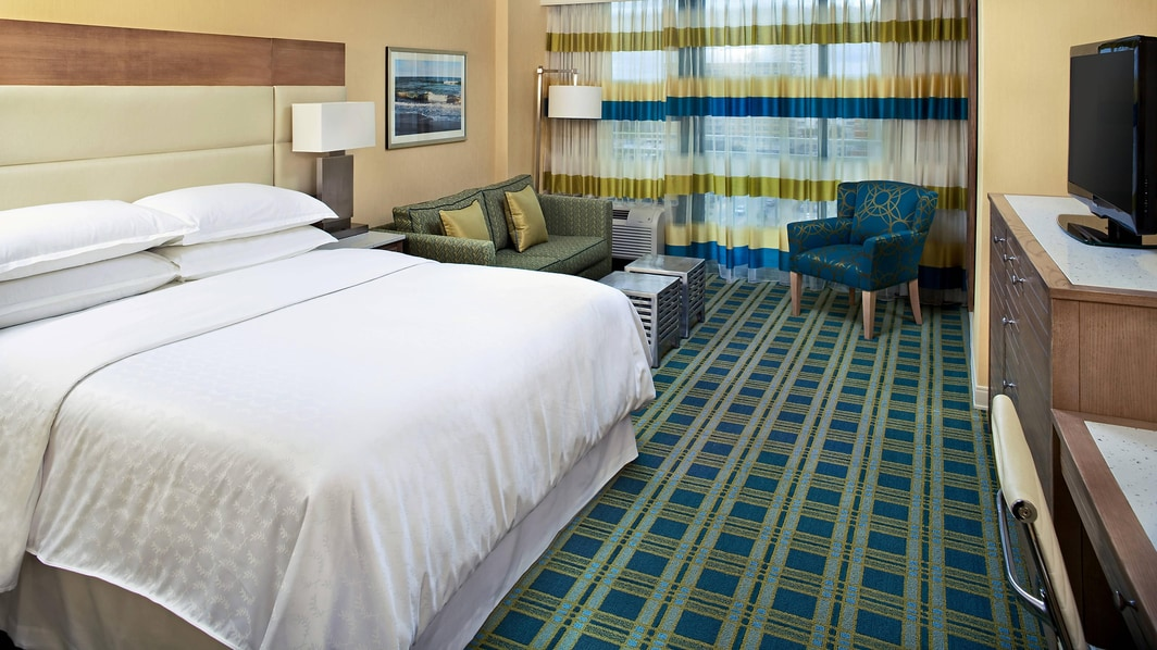 Partial View Room - One King Guest Room