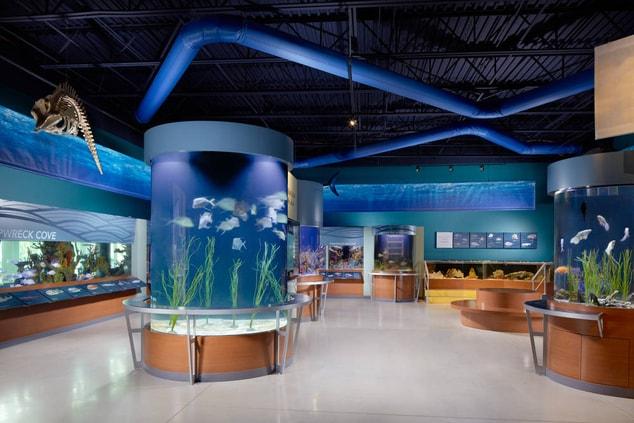 south florida aquarium