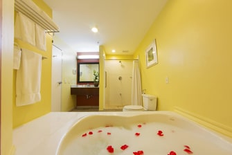 Suriname King Whirlpool Guest Room