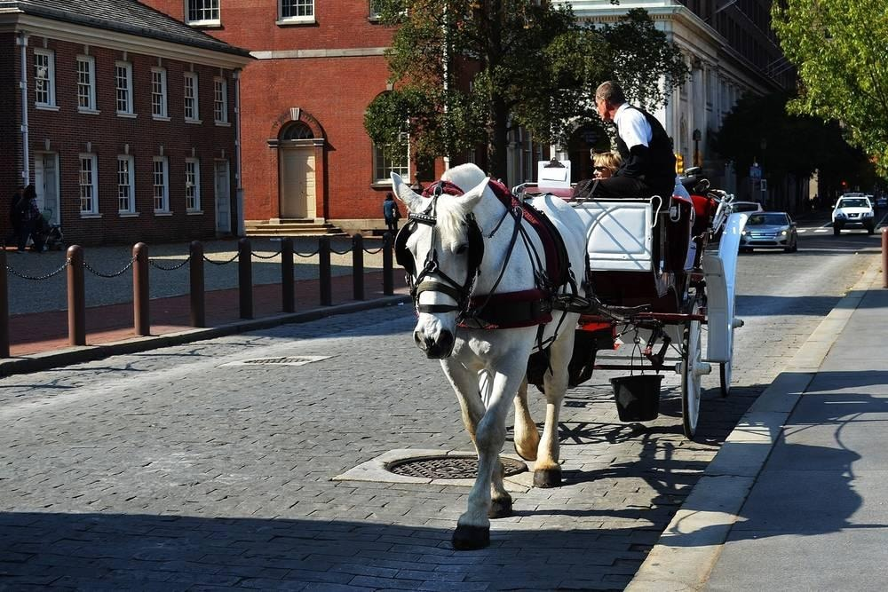 Carriage Ride Through Old Town Philadelphia