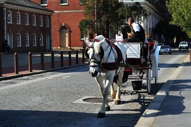 Carriage Ride Through Old Town Philadelphia