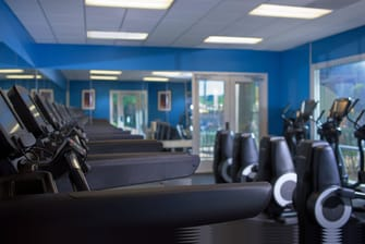 Fitness Center - Cardio Area