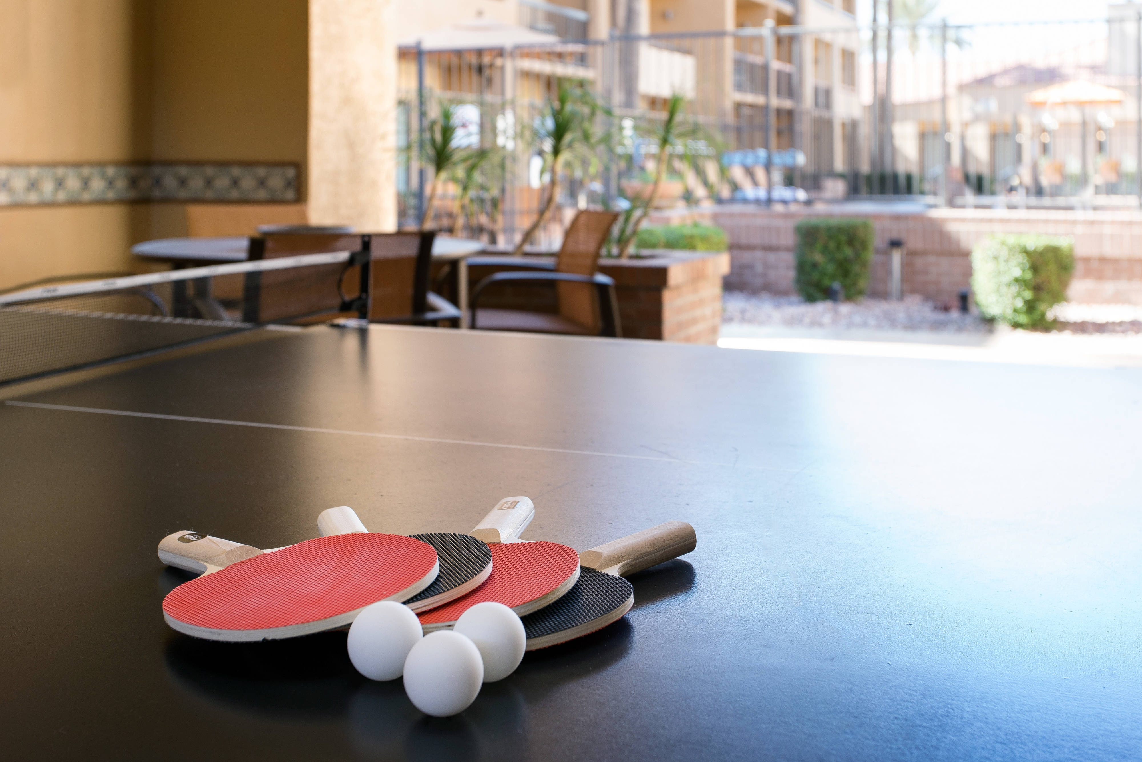 Rec Room - Ping Pong Table