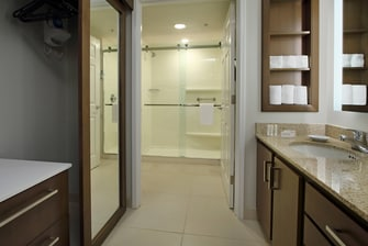 glass shower and vanity