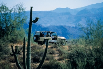 Outdoor Activities Near Scottsdale Hotel