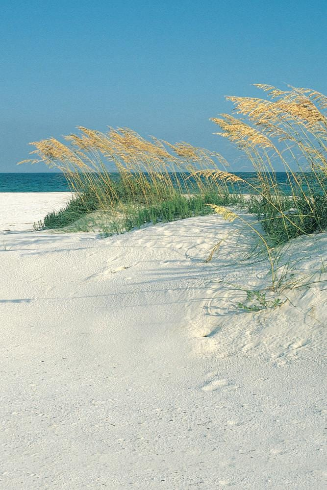 Nearby Gulf Beaches