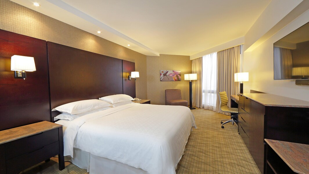 Deluxe Room with one King Guest Room