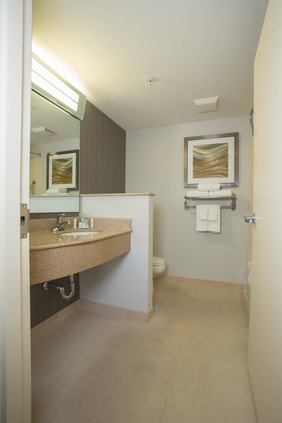 Boston Raynham Hotel King Guest Room, Queen Queen Guest Room and Queen Queen Suite-New Section Bathroom