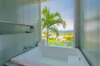 Ocean View Bathtub