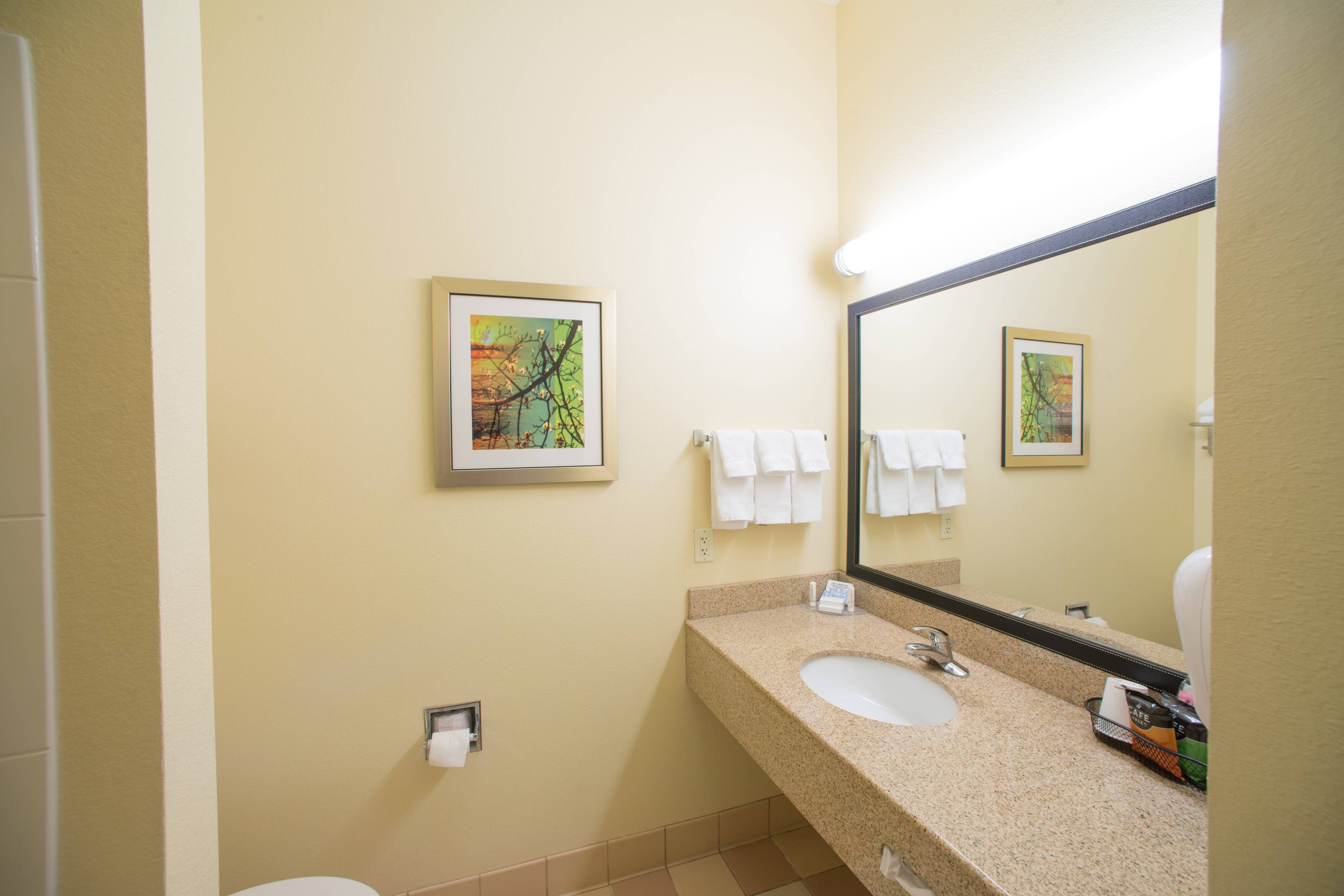 King Suite with a Spacious Bathroom