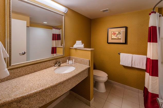 Carson City Hotel Bathroom