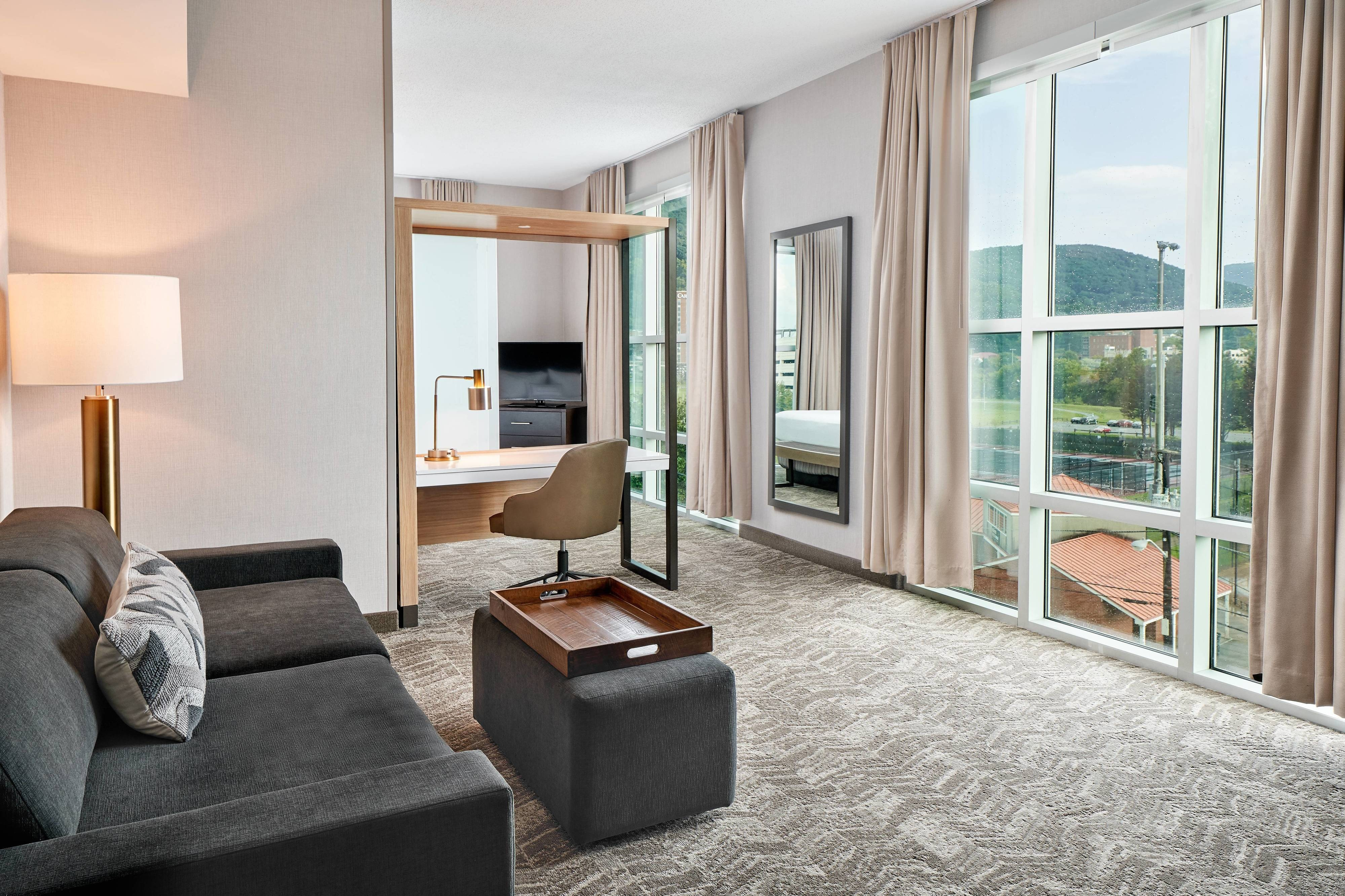 One-Bedroom King Suite - Mountain View