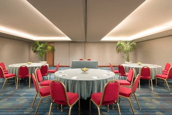 Colonna Doria Meeting Room