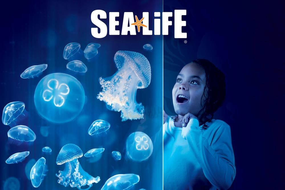 SEA LIFE Aquarium by Legoland®