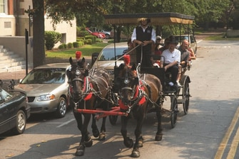 Carriage Tour – Savannah SpringHill Suites