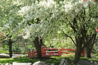 Shiojiri Gardens South Bend
