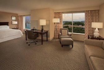 Deluxe King Guest Room with View