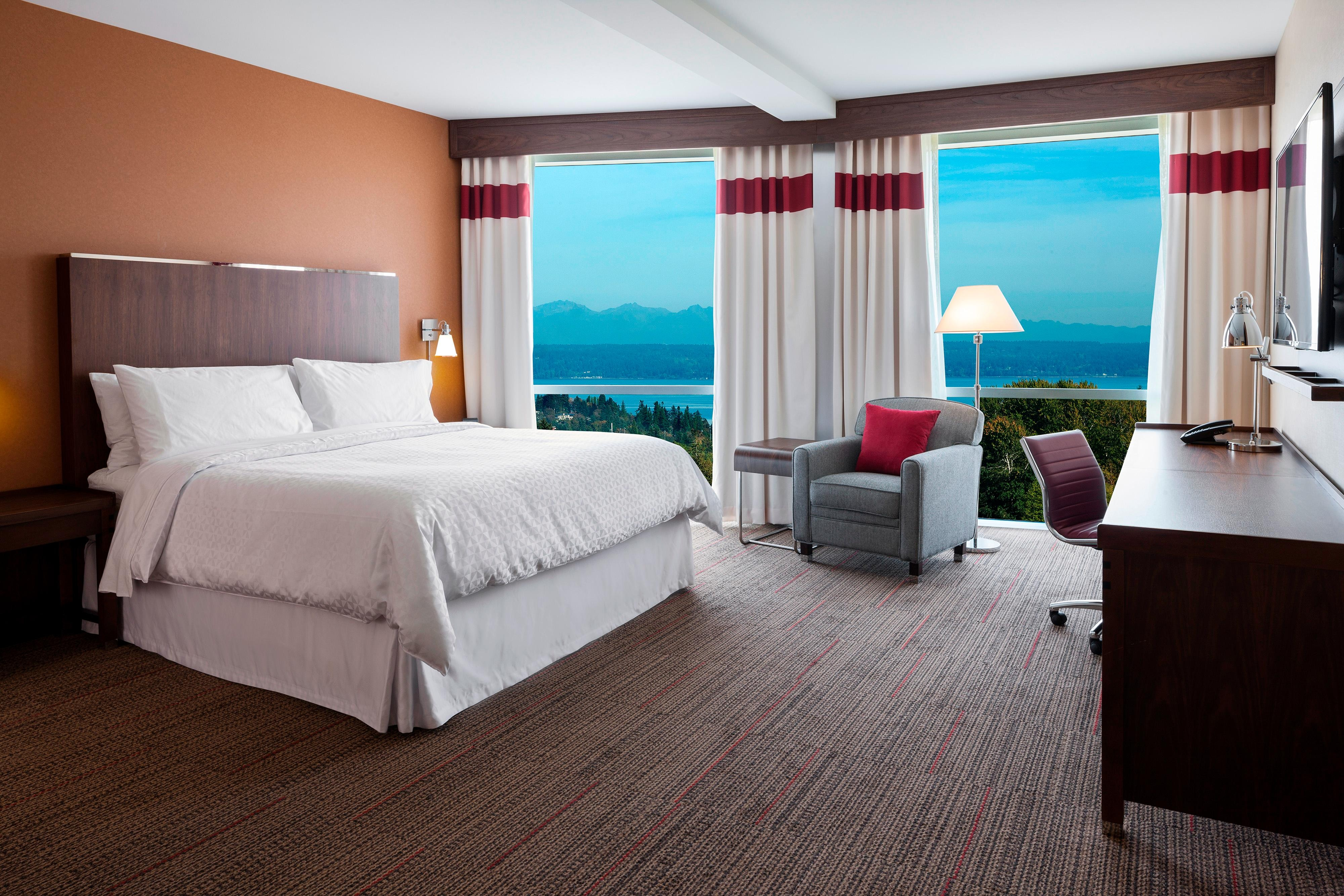 King Guest Room - View