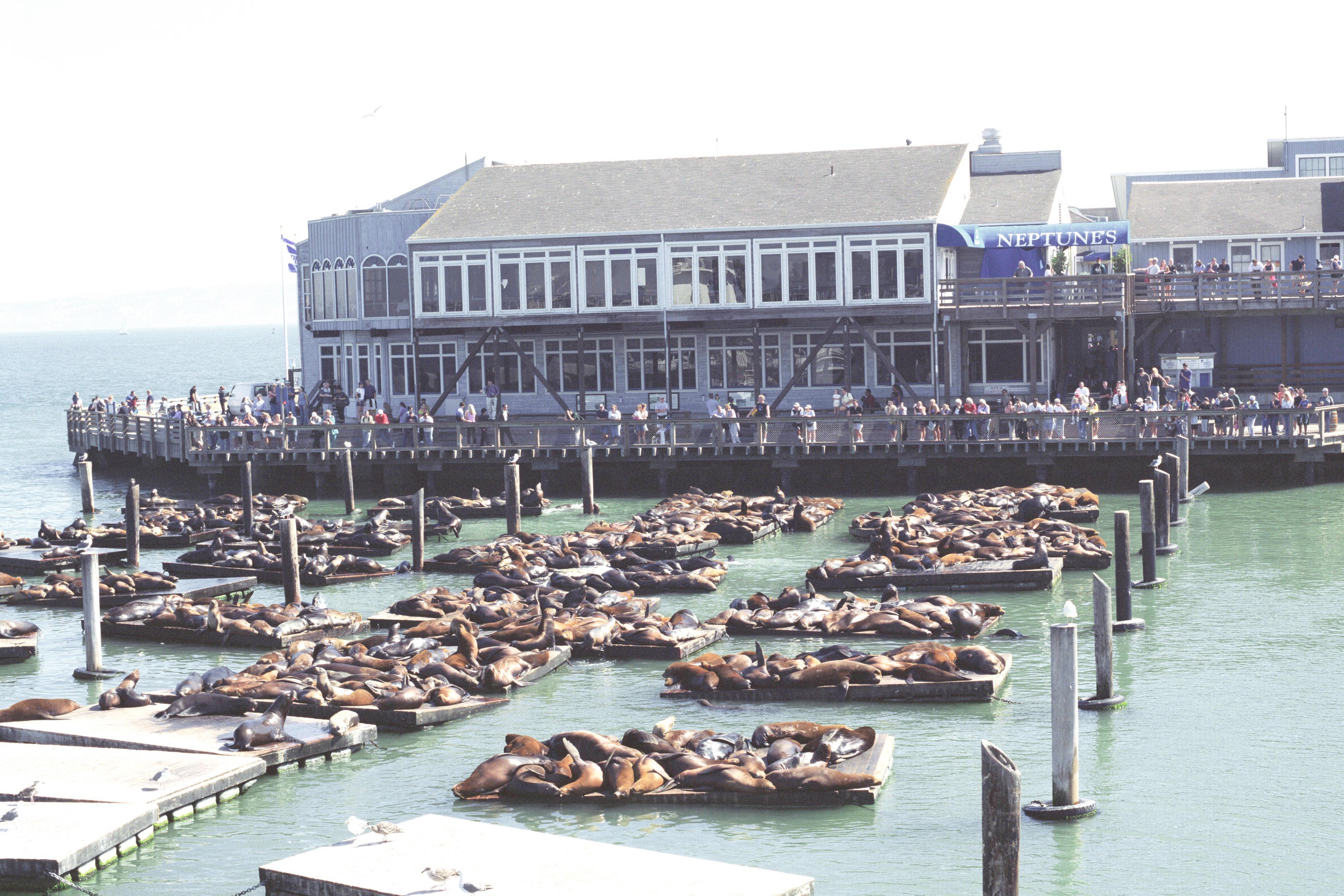 Hotel cerca del muelle Pier 39