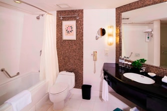 Luxury Suite-Bath Room